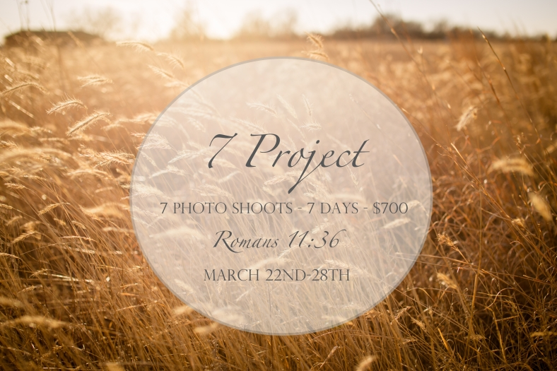 7 Project Date